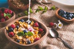 Cornflakens och andra sädesslag med nya frukter av hallon, blåbär och mjölkar Fotografering för Bildbyråer