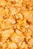 cornflakes принципиальной схемы завтрака предпосылки здоровые Стоковое Изображение RF