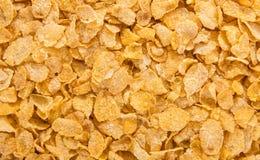 cornflakes принципиальной схемы завтрака предпосылки здоровые Стоковые Фотографии RF