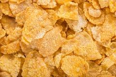 cornflakes принципиальной схемы завтрака предпосылки здоровые Стоковые Изображения