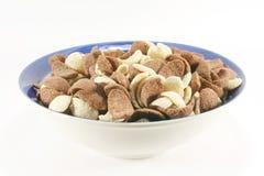cornflakes хлопий для завтрака Стоковое Изображение RF