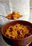 cornflakes Imagens de Stock