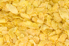 Cornflakes Royalty Free Stock Photo