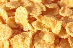 Cornflakes Royalty Free Stock Photos
