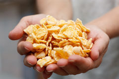 Cornflakes Royalty-vrije Stock Afbeeldingen