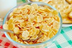 cornflakes Стоковая Фотография