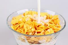 cornflakes Fotografie Stock