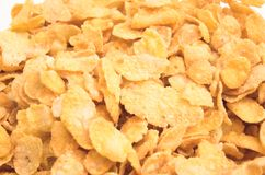 Cornflakes. Isolated on white royalty free stock images