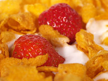 Cornflakes. And Strawberries with milk for breakfast - morning meal Stock Photography
