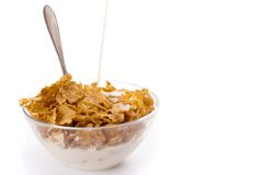 Cornflakes. Milk pouring onto cornflakes isolated on white Stock Photography