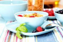 Cornflakes and berries Stock Photos