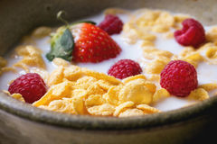 Cornflakes with berries. Cornflakes with milk and berries in ceramic bowl Royalty Free Stock Photography