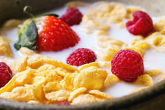 Cornflakes with berries. Cornflakes with milk and berries in ceramic bowl Stock Image