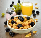 Cornflakes with blackberries Royalty Free Stock Images