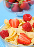 Cornflakes in the bowl with berries Royalty Free Stock Photo