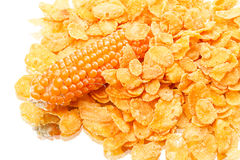 Cornflakes and corn Royalty Free Stock Photography