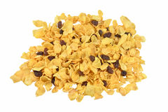 Cornflakes  and currant  isolate. On white background Royalty Free Stock Photography