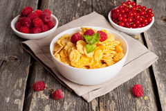 Cornflakes and different Berries. Horizontal, close up Stock Image