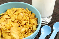 Cornflakes en melk Royalty-vrije Stock Foto