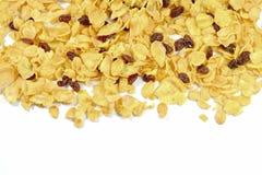 Cornflakes et groseille sur le fond blanc Photo libre de droits