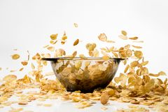 Cornflakes falling into a pile, over white background Stock Images