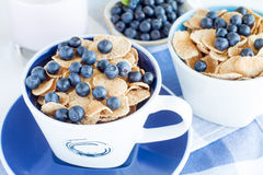 Cornflakes with fresh blueberries Royalty Free Stock Photos