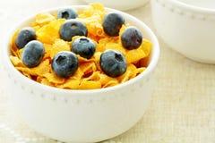Cornflakes met Bosbessen Royalty-vrije Stock Foto