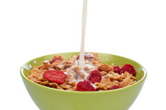 Cornflakes with milk Stock Images