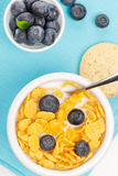 Cornflakes with milk and blueberries Royalty Free Stock Photos