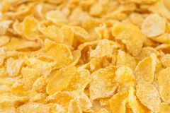 Cornflakes op witte achtergrond Stock Foto