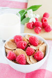 Cornflakes with raspberries. And yogurt Royalty Free Stock Photos