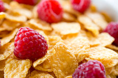 Cornflakes. And red rasberries in a white bowl Stock Photos