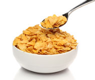 Cornflakes on a spoon Stock Images