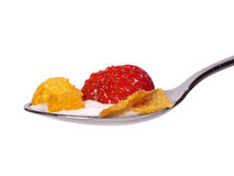 Cornflakes sur une cuillère Image stock