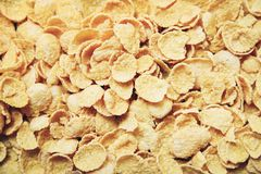 Cornflakes texture background top view - Breakfast cereal royalty free stock image