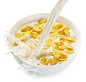 Cornflakes w pucharze na białym tle zdjęcia royalty free