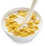 Cornflakes w pucharze na białym tle obraz royalty free