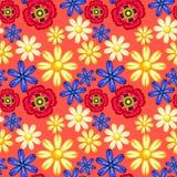 Cornflower, camomile και παπαρούνα Στοκ φωτογραφία με δικαίωμα ελεύθερης χρήσης