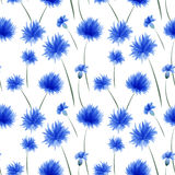 Cornflower pattern. Including seamless sample in swatch panel Royalty Free Stock Photos
