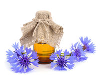 Cornflower with pharmaceutical bottle. Stock Photography