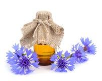 Cornflower with pharmaceutical bottle. Stock Photography