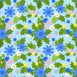 Cornflower seamless summer pattern Stock Photos