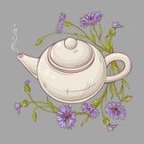 Cornflower tea illustration Royalty Free Stock Photos