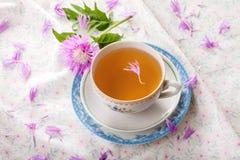 Cornflower tea with simple cornflower Royalty Free Stock Images