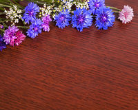 Cornflower and Wood Frame Royalty Free Stock Photography