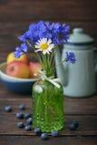 Cornflowers в винтажной бутылке стоковое фото rf