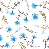 cornflowers картина безшовная Стоковые Фото