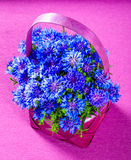 Cornflowers in a basket Stock Photo