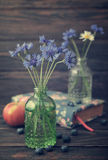 Cornflowers in bottle Royalty Free Stock Photography