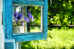 Cornflowers flowers in an old house window. A simple bouquet of cornflowers and daisies on an old old farmhouse window Stock Image